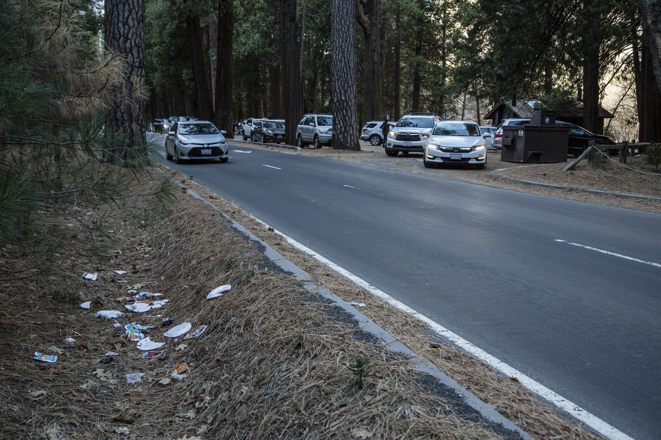 Trash and Poop Overwhelm National Parks, Happy New Year | Talking