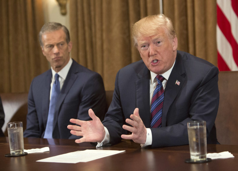 WASHINGTON, DC - APRIL 12: (AFP OUT)  U.S. President Donald Trump participates in a meeting on trade with governors and members of Congress at the White House on April 12, 2018 in Washington, DC. Seated left is Senator John Thune(R-SD). (Photo by Chris Kleponis - Pool/Getty Images)